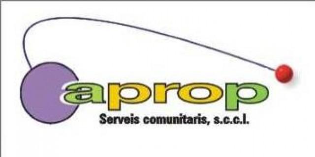 Imatge1 APROP:serveis comunitaris SCCL