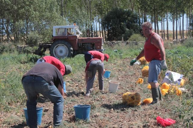 Imagen3 Asociación Desarrollo Comunitario BºAires (ASDECOBA)