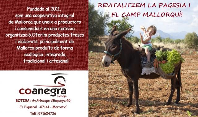 Imagen2 Coanegra, S.coop.