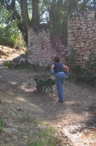 Imagen3 Asociación Levando Querencia