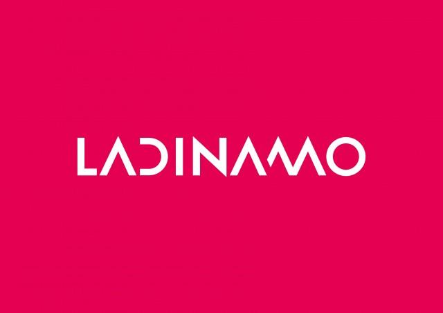 Imagen1 La Dinamo Fundació
