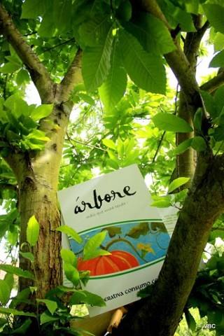Imagen2 Consumo Consciente ÁRBORE